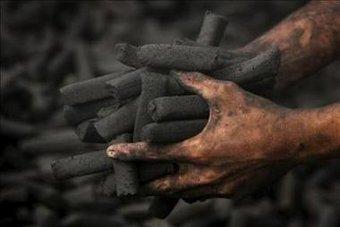 kaufen Carbón vegetal artesanal